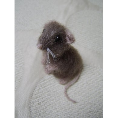 Little brown house mouse