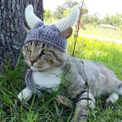 The Viking: Hat for Cats