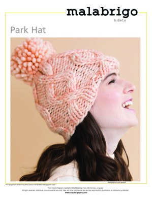 Park Hat in Malabrigo Rasta - Downloadable PDF